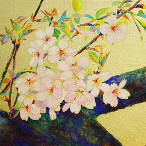 《Sakura》 24.2×33.3cm 2015