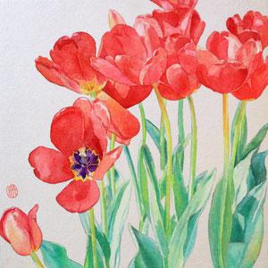 《Tulip》 33.3×33.3 2016