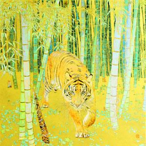 《虎》  60.6×60.6cm 2015