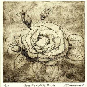 Rose Radierung schwarz gewischt // Druckplatte 19,6 x 20,2 auf Büttenpapier