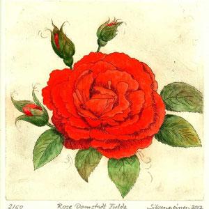 Rose Radierung und Gouache // Druckplatte 19,6 x 20,2 auf Büttenpapier