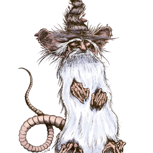 Wizard Rat Design for a children's book pitch