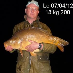 Pêche à la carpe de nuit La Grenouillère Frise Somme