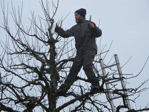 28. Februar 2015 - Der Mann im Baum. Frühling?