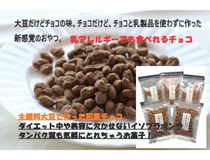 大豆,チョコ,生チョコ,ダイエット,ヘルシー,女性のためのお菓子,美容,乳アレルギー,生チョコみたいなしっとり大豆,生チョコ大豆