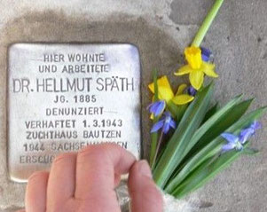 Dr. Hellmut Späth