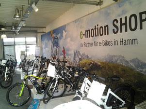 e-Bikes in Hamm