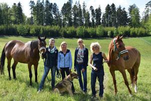 Vorstand Verein Zweites Leben für Sportpferde