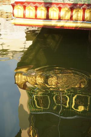 Spiegelung, Wasser
