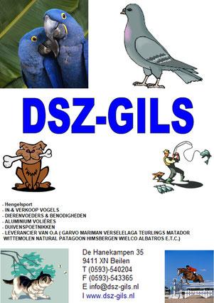 DSZ-GILS