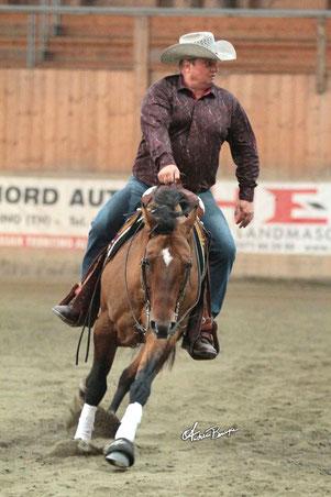 Stoll Fritz - Novice Horse Non Pro