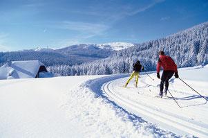 Skifahren & Langlauf