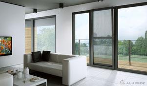 Fenster + Türen