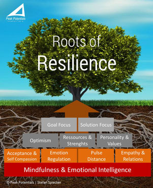 The mindfulness based Resilience Pyramide