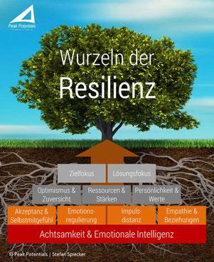 Die Wurzeln der Resilienz und ihre Schutzfaktoren