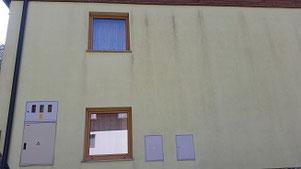 Schimmelbeseitigung, Schimmel, Schutz vor Schimmel, Schimmel Entfernung, Schimmel wegwaschen, abwaschen, Schlieren an der Fassade, Fassade neu streichen, Fassadenanstrich, Fassadenreinigung, Schutz vor Schimmel,