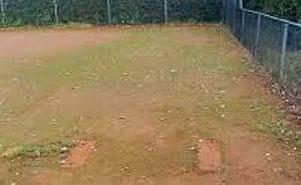 Tennisplätze bieten im Schatten ideale Voraussetzungen für das Wachstum von Algen und Schimmel. Der kann gesundheitsschädlich sein. Alga Velan beseitigt diesen Schimmel