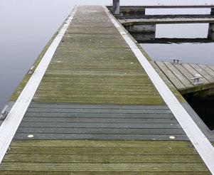 Schimmel auf Holzstegen am Wasser ist gefährlich weil der macht die Stege rutschig. Und am Wasser dürfen nur problemlose Reiniger verwendet werden. Alga Velan darf sogar in Naturschtzgebieten und an Gewässern mit Fischbestand angewendet werden.