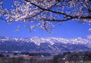 北信濃の春 (127cmx190cm)