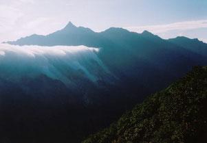 雲の瀧 (半切)