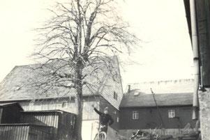 Bild: Lindner Wünschendorf