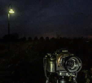 SONY Alpha 7s2 und ZEISS Biogon-M 2,0/35 mm sowie NOVOFLEX NEX/LEM-Adapter. Foto: Klaus Schoerner