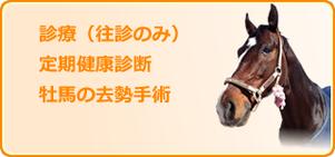 馬の診療・健康診断・牡馬の去勢手術