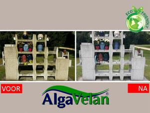 Alga Velan entfernt Schimmel von Denkmälern und reinigt porentief
