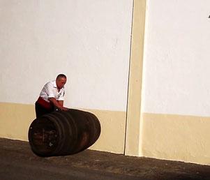 ヘレス、ヨーロッパワイン都市2014に選出 (www.diariodegastronimia.com)
