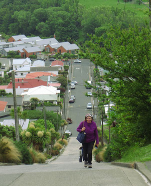 Auf der steilsten Strasse der Welt in Dunedin.