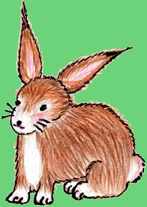 Der Hase Erpf Erdfell im Gras mit einer Karotte (Buntstiftzeichnung)