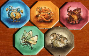 Dodo, Goldkröte, Riesenfossa, Eulenfalter & Pfeiffhase