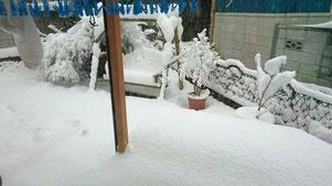 日本では積雪