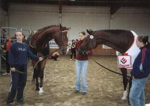 Landesmeisterschaften 2003 in Gera