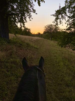 Wieder unterwegs Richtung Sonnenaufgang