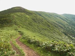 松手山から平標山を望む(一番奥です)