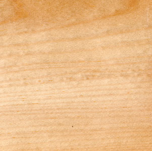 Holz Kiefer