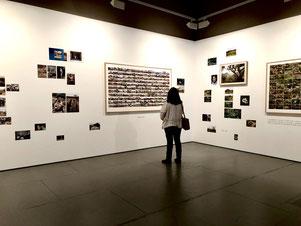 Compilación de imágenes y diarios del fotógrafo Javier Andrada en el CICUS, Sevilla    .Por Laura Delgado.