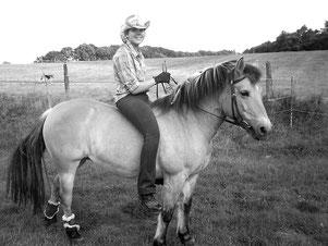 Schicksalsschläge - Reiterleben ist hart; Haflinger-Fjord-Stute; Westernpferd, Indianerpferd, Seelenpferd