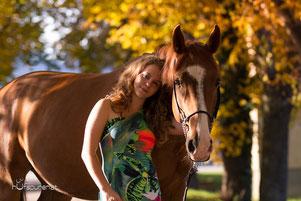 Tschechisches Warmblut Pferdefotoshooting Niederösterreich