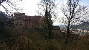 Heidelberger Schloss, Blick vom Hortus Palatinus auf den Ottheinrichsbau