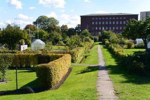 Gartenweg - Foto: Kaden
