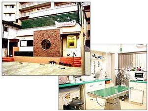 東京都清瀬市 うちだ動物病院