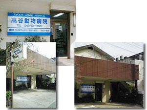 昭島市 高谷動物病院