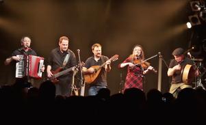Die Band Wide Range beim Auftritt im Knust in Hamburg