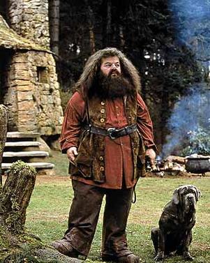 Oh Mann, wenn ich geahnt hätte, wie groß ich mit Harry rauskomme, wäre ich vorher nochmal zum Friseur gegangen.