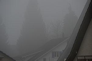 14. Novermber 2014 - Erster Blick aus dem Fenster: Grau in Grau