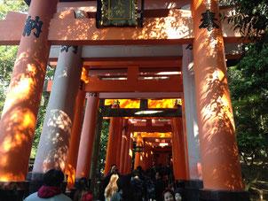 Heian Jingu Shrine2 - Hire Car in Japan