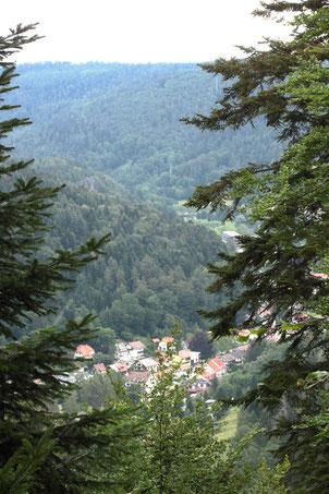 Blick vom Aizenberg auf einen Teil von Bad Herrenalb (G. Franke, 05.07.2020)