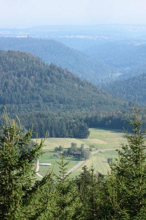 Blick auf die Wiesen im oberen Gaistal bei Bad Herrenalb - eine Wanderung von da zum Schweizerkopf und über den Weithäuslesplatz zurück ist sehr abwechslungsreich (G. Franke, 09.08.2020)